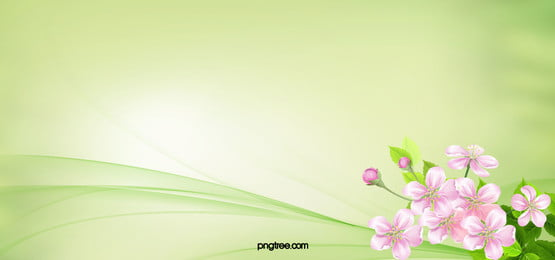 fresh flowers green background, Flowers, Fine, Card Background image
