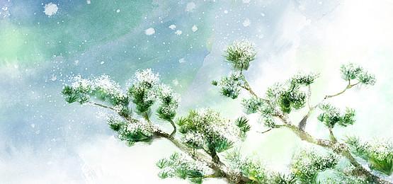樹木木本植物維管植物 景觀 天空 夏天背景圖庫