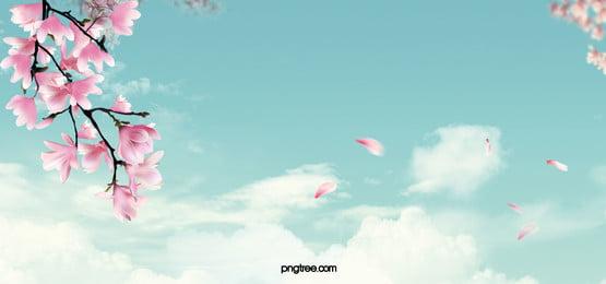 fundo romântico de primavera, A Primavera, Kasuga, Pétala Imagem de fundo