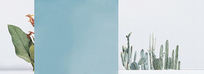 淘寶背景, 藍色, 手繪, 仙人掌 背景圖片