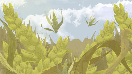 Crop Background Photos Vectors And Psd Files For Free Download Pngtree