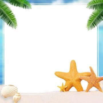 फोटोग्राफी रेतीले समुद्र तट के साथ तारामछली , तारामछली, शंख, समुद्र तट पृष्ठभूमि छवि