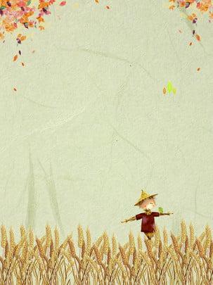 小麦 穀物 農業 フィールド 背景 , 種, 田舎, 収穫 背景画像
