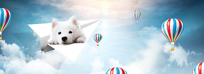 पालतू पशु पृष्ठभूमि, पालतू जानवर, Taobao, ब्लॉग पृष्ठभूमि छवि