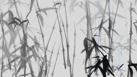 Cavalinha Fern ally Aquatic Planta Background Plantas Vasculares A Imagem Do Plano De Fundo