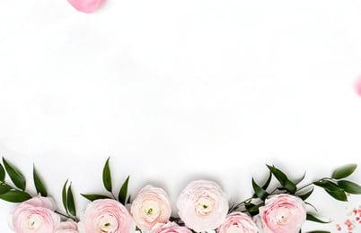 रोमांटिक गुलाब के फूल केक, रोमांटिक, कल्पना, गुलाब पृष्ठभूमि छवि