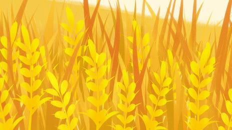 lúa mì ngũ cốc lương  nông nghiệp  nền, Cây Trồng, Nông Trại., Thu Hoạch. Ảnh nền