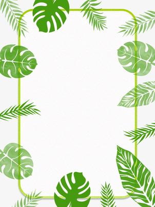 樹木植物葉植物 , 維管束植物, 春, 環境 背景画像