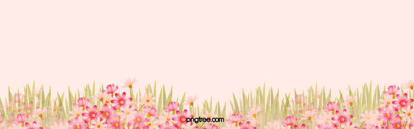Romantic Pink Flowers Background, Poster, Banner, Art, Background image