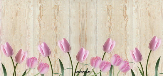 pink roses background, Happy Valentines Day, Valentines Day, Pink Background image