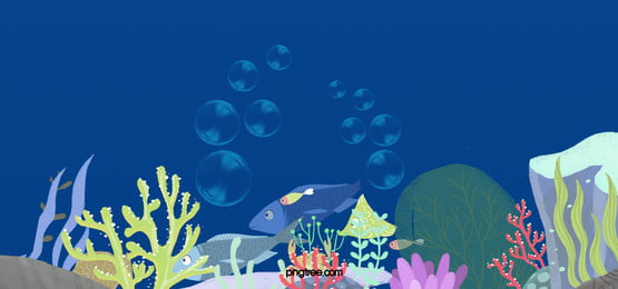 Reef Coral Reef Pattern Design, Art, Graphic, Backdrop, Background image