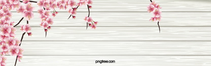 Flower background photos and wallpaper for free download beautiful spring flowers plants beautiful spring flowers background image mightylinksfo