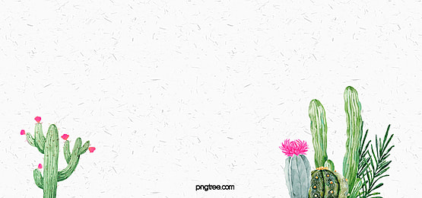 acuarela planta cactus antecedentes, Acuarela, Cactus, Leaf Imagen de fondo