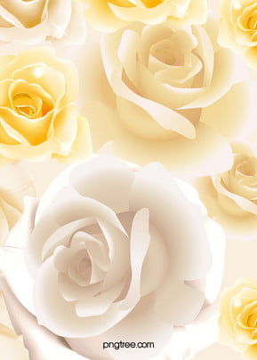 white rose flower bouquet background , Romantic, Beautiful, Dream Background image