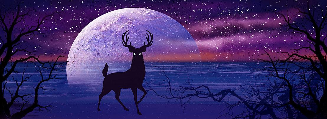 सुंदर भेड़ियों, सुंदर भेड़ियों, रात को आसमान, भेड़िया बहुत बड़ी गलती पृष्ठभूमि छवि