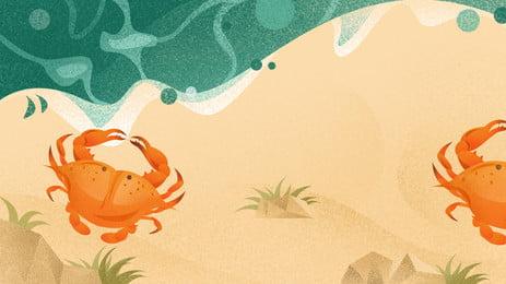 pantai peluru hiasan latar belakang, Pantai Berpasir, Shell, Pearl imej latar belakang