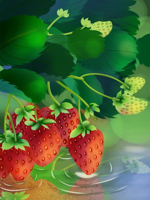 草莓背景 , 草莓, 紅色, 水果 背景圖片