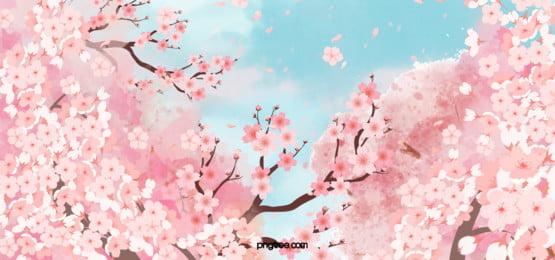 아름다운 벚꽃 배경 자유형, 아름다운, 자유형, 벚꽃 배경 이미지