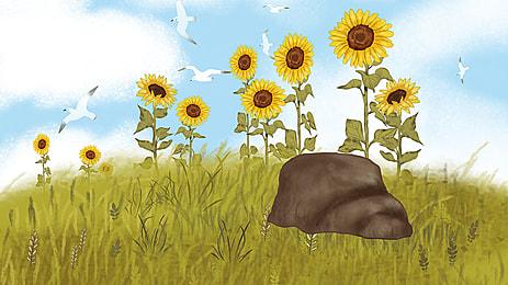 向日葵藍天背景, 向日葵, 藍天, Banner背景 背景圖片