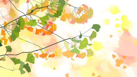 cành hoa anh đào của hoa anh đào, Hoa Anh đào., Cành Cây., 唯美 Ảnh nền