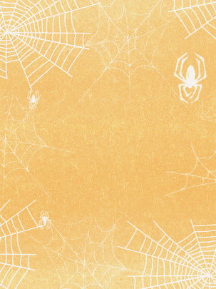 cobweb spider web web spider background , Trap, Night, Black Background image