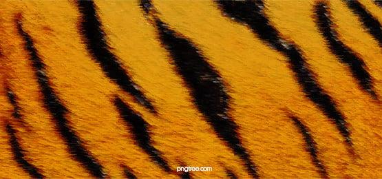 動物の毛皮の毛髪の質感, 動物, 毛皮, 毛 背景画像