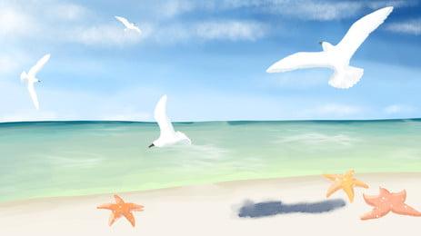 समुद्र शेल मोती पृष्ठभूमि, समुद्र तट, गोले, मोती पृष्ठभूमि छवि