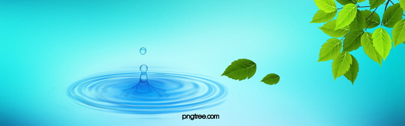 fresh green leaves water drops blue background beauty cuisine, Art, Cool, Nature Background image