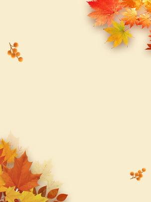 Autumn maple leaves , O Outono, No Outono, Maple Leaf Imagem de Fundo