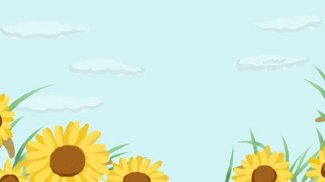 向日葵 花 黃色的 夏天 背景, 場, 植物, 開花 背景圖片