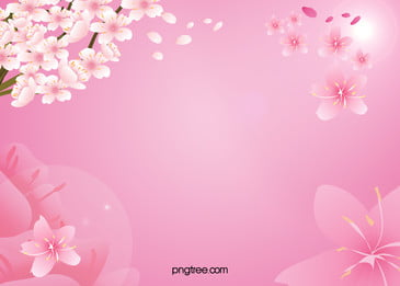 Beautiful Pink Peach Blossom Clear Background, Pink, Peach, Squid, Background image