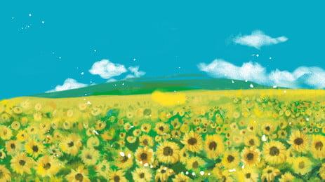 girassol flor amarelo floral background, Verão, Planta, Flora Imagem de fundo