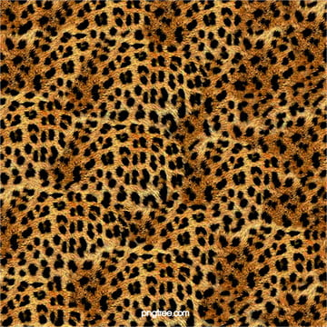 Leopard Pattern Texture Design Background, Leopard, Backdrop, Seamless, Background image