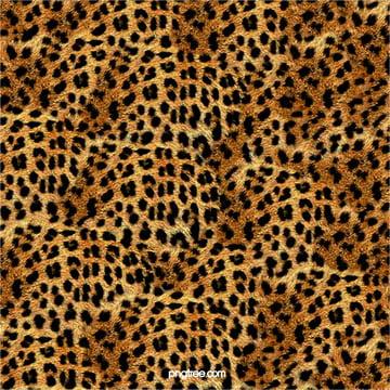 leopard pattern texture design background , Leopard, Backdrop, Seamless Background image