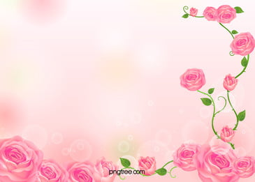 roses card pink flowers background, Pink, Roses, Card Background image