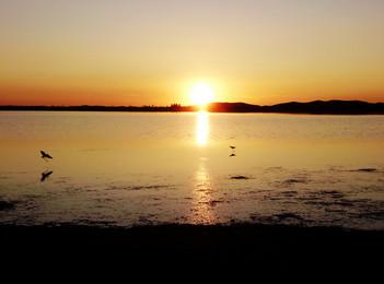 estrella sol cuerpo celeste puesta de sol de fondo, Ocean, Playa, Agua Imagen de fondo
