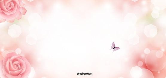 côn trùng  côn trùng  muỗi phylum arthropoda kiến nền, Màu Hồng., Cánh Hoa, Đóng Cửa Ảnh nền