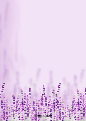 lavender purple aesthetic flower message h5 background material , Lavender, S, Manor Background image