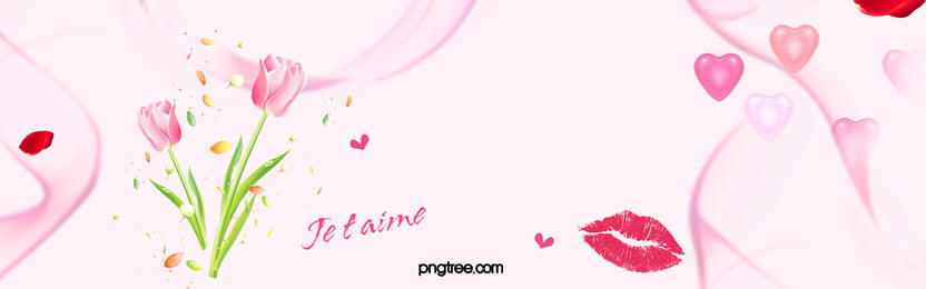 hoa tulip màu hồng  hoa hoa  nền, Cây, Trang Trí., Thẻ Ảnh nền