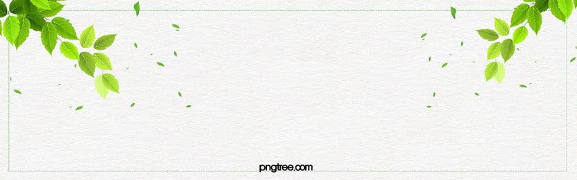 Banner de Fundo fresco e pequenos cosméticos Fundo Fresco Banner背景 Imagem Do Plano De Fundo