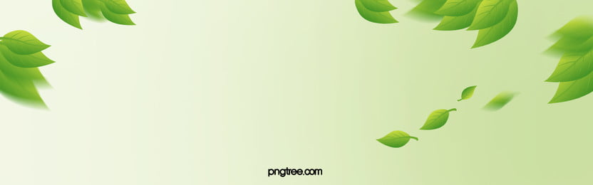 taobao शरद ऋतु सितंबर सुंदर नए हल्के हरे रंग की पत्ती बैनर, Taobao, जल्दी शरद ऋतु, सितंबर पृष्ठभूमि छवि