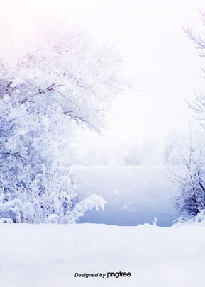 a clear blue purple winter snow gradually changes , Tree, Romantic, Snow Background image