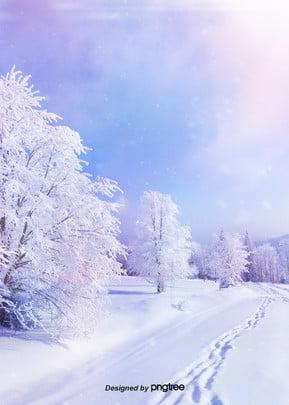 夢の美しい冬の雪版の森の背景 , N 冬, 光線, 目をする 背景画像
