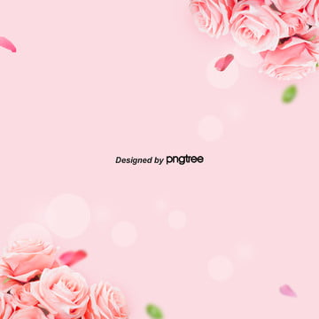 Romantic Pink Rose 38 Womens Valentines Day Background , Leaf, Aestheticism, Female Sex Background image