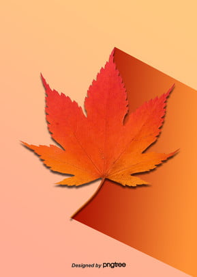 autumn maple leaf background design Maple Leaf As Imagem Do Plano De Fundo