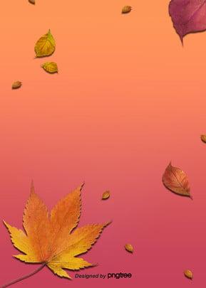 Nền lá mùa thu 枫叶 Lá Mùa Hình Nền