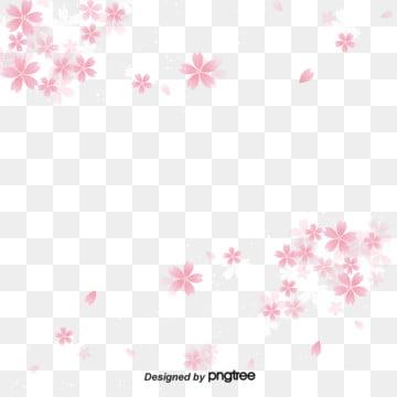 간단한 흰색 분홍색 벚꽃 배경 , 사랑스러운, 플랫, 벚꽃 배경 이미지