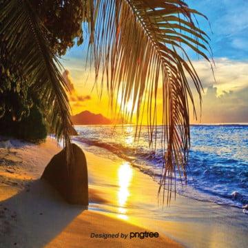 唯美の海辺の木の葉の夕暮れの背景 , 唯美, 夕日, 木の葉 背景画像