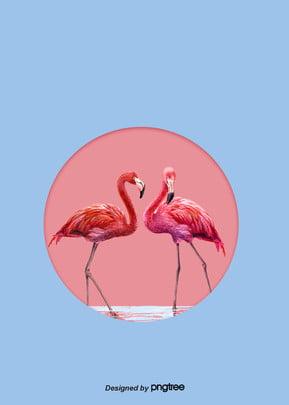 flamingos cor   de   rosa background design , Animal, Flamingo, Cor - De - Rosa Imagem de fundo