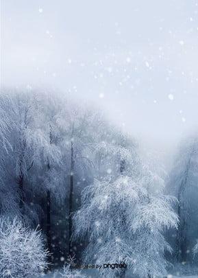 cây nền tuyết mùa đông , Mùa Đông, Cây, Tự Nhiên Ảnh nền
